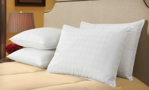 sealy pillows