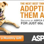 Your Gift Could Save An Animal's Life Help ASPCA