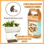 Abe's Market Giveaway $100 Prize Pack!