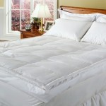 "Royal Majesty 4"" Downtop Featherbed Up to 72% Off"