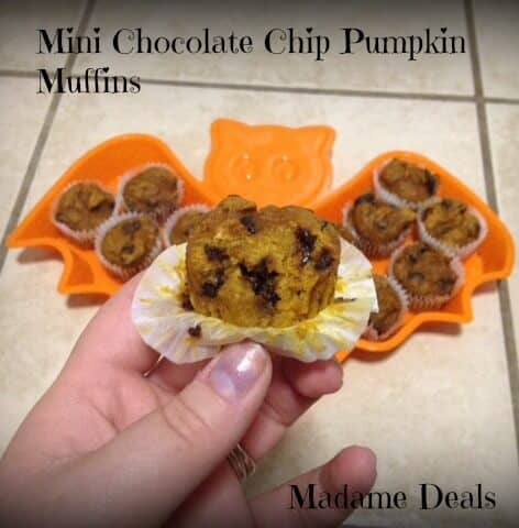 Kid Muffin Recipes: Mini Chocolate Chip Pumpkin Muffins