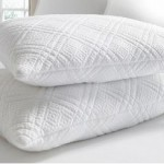 kathy ireland RESORT 2-Pack of Jumbo or King Quilted Memory-Foam Pillows Up to 61% Off