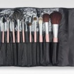 Beaute Basics 12-Piece Makeup Brush Set Only $17.99 Shipped
