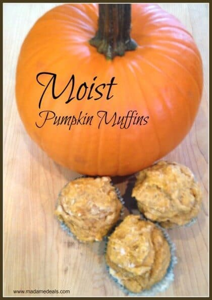 Moist Pumpkin Muffins Recipe