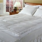 Club Le Med 5″ Down-Top Featherbed