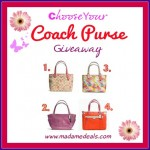 Choose Your Coach Purse Contest