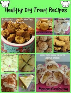 healthy dog treat recipes