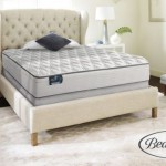 Simmons BeautySleep Mattress Set as low as $299.99 shipped!