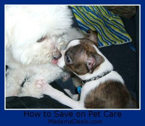 how to save on pet care
