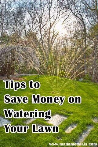 Save Money Watering Your Lawn