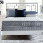 Serta Perfect Sleeper Plush Mattress Set