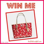 Spring Fashionista Events: Coach Purse Giveaway