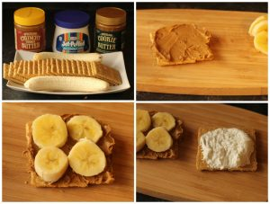 Cookie Butter Smores 3