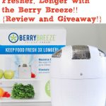BerryBreeze Review and Giveaway!