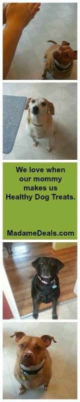 no bake dog treats 3