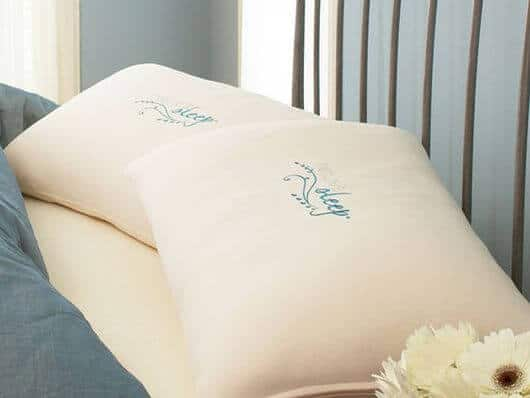 Two Nature's Sleep Pillows for Only $79 Shipped!