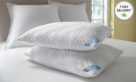 kathy ireland RESORT Quilted Memory-Foam Pillows