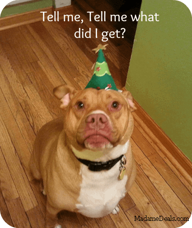 pet gift ideas