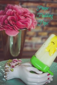 frozen pudding pop
