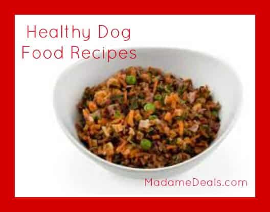 health dog food recipes