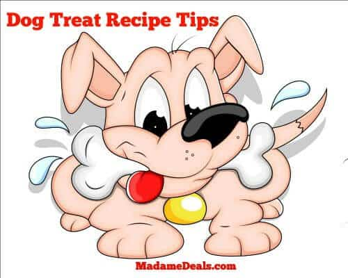 Healthy dog treat recipes tips