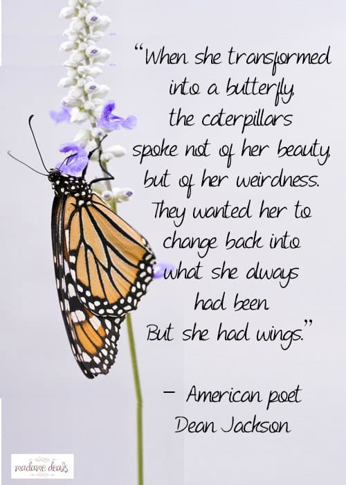 Caterpillar Moments