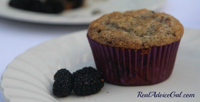 Mulberry muffins that's moist and tasty.