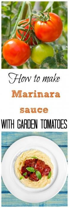 Homemade Marinara Sauce With Garden Tomatoes Recipe