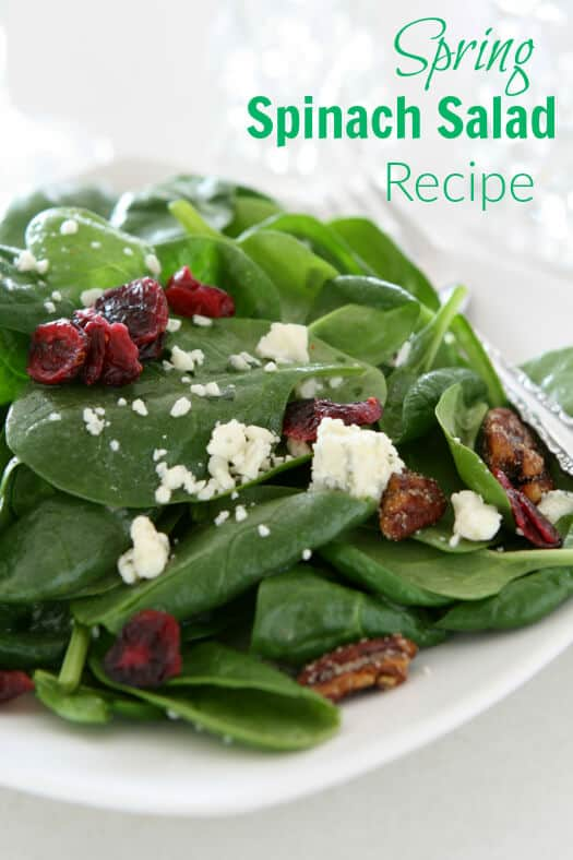 Spring Spinach Salad Recipe