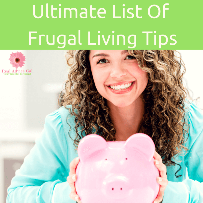 Frugal Living Tips are a must when you are on a budget! We've compiled our best for living on $30,000 per year or less and put them in one easy spot!