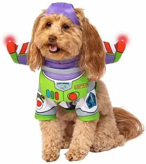Dog buzzlightyear
